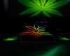 Cannabis Floor Pillows