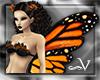 ~V Monarch Butterfly Win