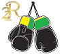 R22 Boxing Fight Action