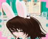 {N} Kawaii Bunny Ears :D