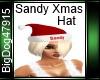 [BD]SandyXmasHat