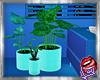 [LD]Plants VasecSet