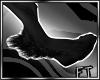 Blk Digigrade Fur [FT]