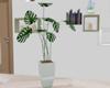 :3 Modern Plant