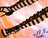 Gladiator- Brown Jeweled