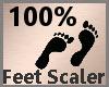 Feet Scaler 100% F