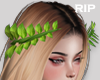 R. Leaf crown F