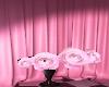fairytale roses