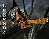 Fox/Witches Flying Broom