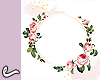 Background roses whte/pk