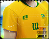 Brazil Fan 18