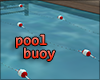 Pool Lane Buoy