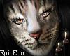 Khajiit Cat Face/Head v3