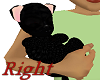BLK furry baby Hold R.