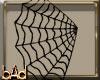 Spiderweb Veil