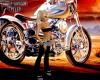 Harley Davidson Chaps