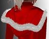 SL Christmas Hood