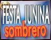 FIESTA JUNINAS SOMBRERO