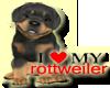 [BB] I LOVE ROTTWEILER