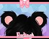 🎀 Bear ears ONYX