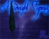 Cyprus Tree L Midnight