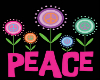 Peace Wall pic