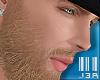 ® Beard. long#