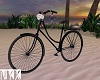 70s Couples Bike