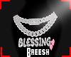 Blessing Cust chain
