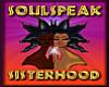 SoulSpeak Fur Slides V3