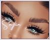Ⓢ Laminated Eyebrows/B