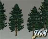 J68 Pine Tree