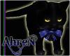 *A* Kieran the Black Cat