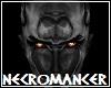 Necromancer Skin