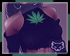 ! Weed Top