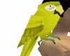 yellowparrot