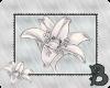 ~B~ Frog Flower Stamp
