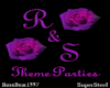 R&S Theme Parties 2