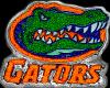 Florida Gators Chain