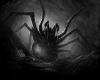 *p Poison Spider