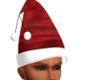 ANIM. CHRISTMAS HAT (M)