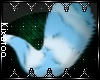[K] Aria Tail V4