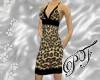 (PF)Luscious Leopard