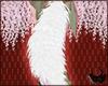 ☾. Ookami Tail | Tsuki