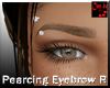 Pearcing Eyebrow Right