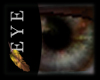 [Sc] Hazelme Eyes