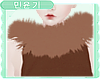 MY| Eevee Collar