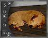 Rus: Sleeping dog 2