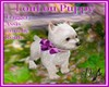  DRB  LouLou Puppy Anime