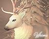 North Pole Reindeer